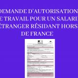 DEMANDE D'AUTORISATION DE TRAVAIL